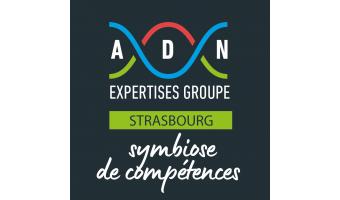 _strasbourg_fond_noir_-_adn_expertises_strasbourg.png