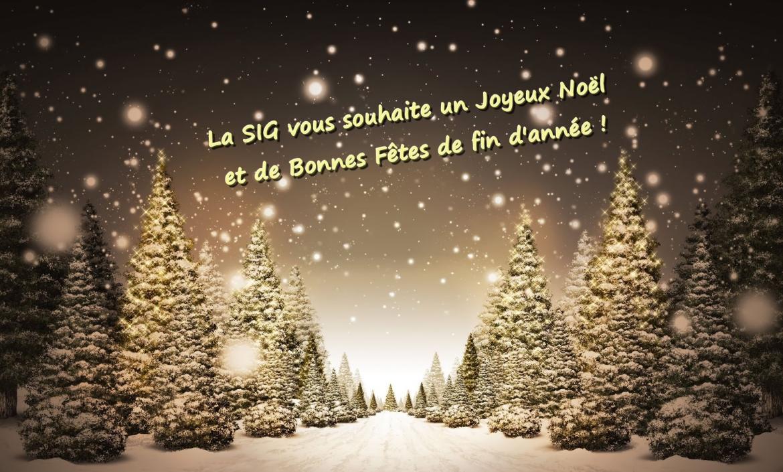 Christmas-Trees-87
